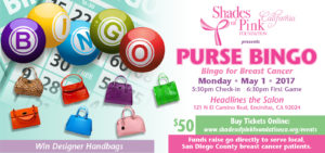 Purse Bingo 2017- Bingo for Breast Cancer Support @ Headlines the Salon | Encinitas | California | United States